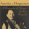 Amrita of Eloquence: A Biography of Khenpo Karthar Rinpoche